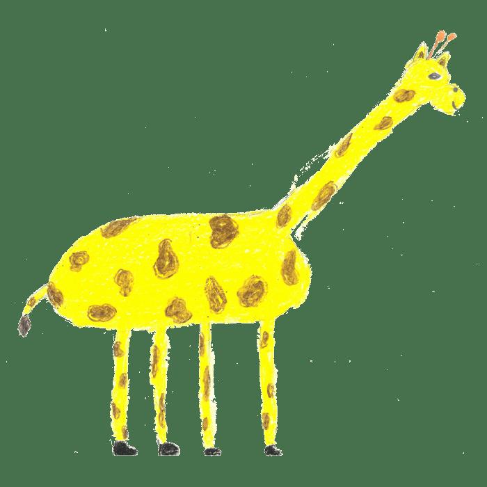 Mo1_Giraffen