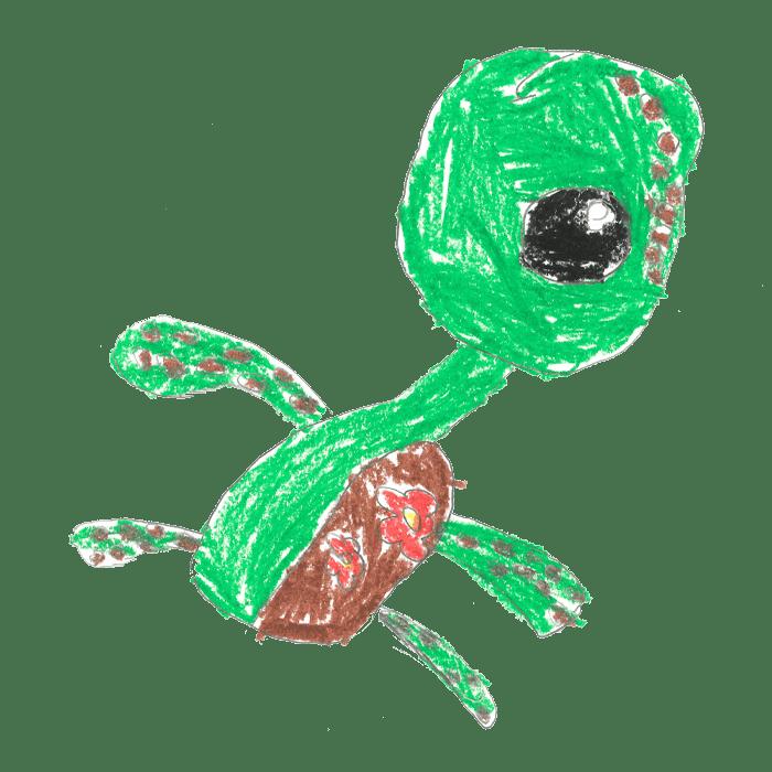 Mo1_Schildkröten